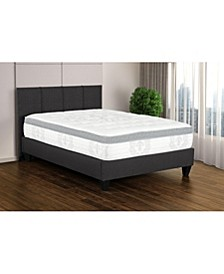 "Primo Everly 14"" Cushion Firm Euro Pillow Top Mattress -Twin"