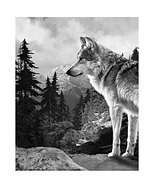 Inc Throw Knit Print Lone Wolf