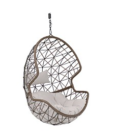 Danielle Swing Resin Wicker Basket Design Hanging Egg Chair