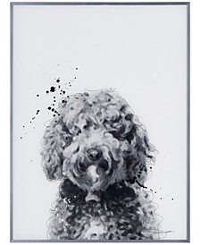 "Labradoodle Pet Paintings on Reverse Printed Glass Encased with a Gunmetal Anodized Frame Wall Art, 24"" x 18"" x 1"""