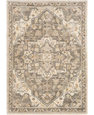 "Surya Tuscany Tus-2308 Mocha 7'10"" X 10'3"" Area Rug In Brown"