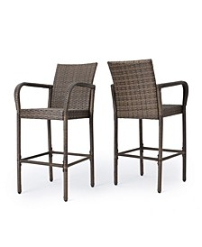 Delfina Outdoor Barstool, Set of 2