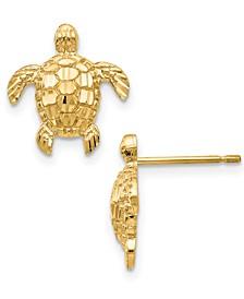 Textured Sea Turtle Stud Earrings in 14k Gold