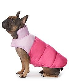 Colorblocked Dog Coat
