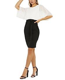 Two-Tone Sheer Sleeve Dress
