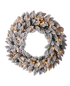 Pre-Lit Snow Flocked Christmas Wreath with Warm LED Light
