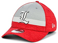 Louisville Cardinals Shadow Stripe 39THIRTY Cap