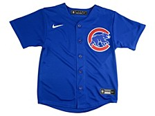 Youth Chicago Cubs Official Blank Jersey