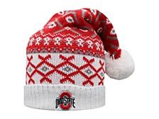 Ohio State Buckeyes Festis Slouch Pom Knit Hat