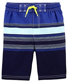 Little Boys Striped Swim Trunks