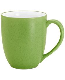 Noritake Colorwave Mug, 12 oz.