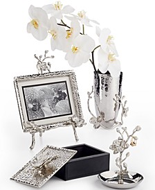 White Orchid Collection