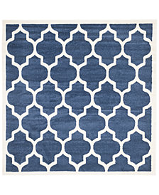 Safavieh Amherst Indoor/Outdoor AMT420 7' x 7' Square Area Rug