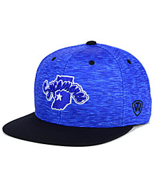 Top of the World Indiana State Sycamores Energy 2-Tone Snapback Cap
