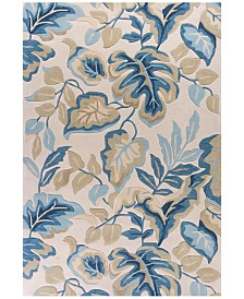 Kas Coral 4169 Ivory Exotics Area Rugs