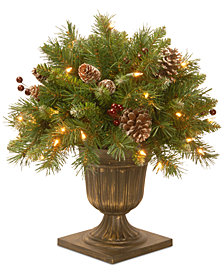 "National Tree Company 18"" Frosted Berry Porch Bush with 35 Clear Lights"
