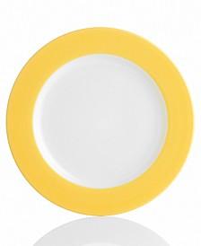 Colorwave Rim Dinner Plates