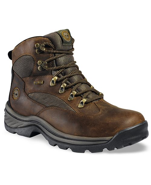 0786da77 Timberland Men's Waterproof Chocorua Trail Gore-Tex Hiker Boots ...