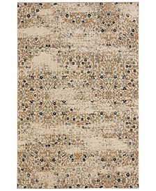 Touchstone Eme Bronze Area Rug Collection