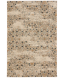 Karastan Touchstone Eme Bronze Area Rug Collection
