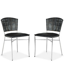 Honner Set of 2 Dining Chairs, Quick Ship