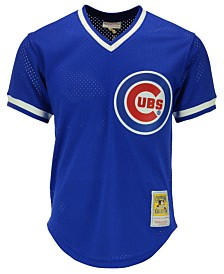 Mitchell & Ness Men's Ryne Sandberg Chicago Cubs Authentic Mesh Batting Practice Jersey