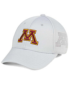 Top of the World Minnesota Golden Gophers Light Gray Rails Flex Cap
