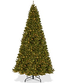 12' North Valley Spruce Hinged Tree With 1200 Clear Lights
