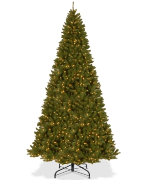 National Tree Company 12 North Valley Spruce Hinged Tree With 1200 Clear Lights