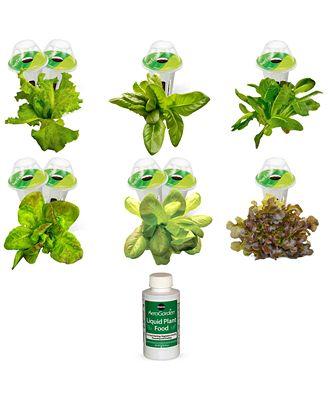 AeroGarden Heirloom Salad Green 9-Pod Refill Kit