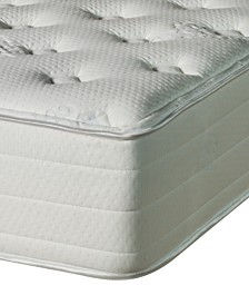 Nature's Spa by Paramount Oasis Latex 13'' Firm Mattress- Queen