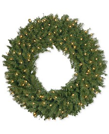 """36"""" Norwood Fir Wreath With 100 Clear Lights"""
