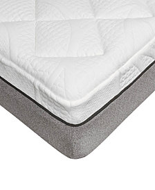 Sleep Trends Sofia Plush Gel Memory Foam 14-Inch Mattress, Quick Ship, Mattress in a Box - Queen
