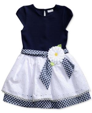Sweet Heart Rose GinghamSash Drop Waist Dress Toddler Girls (2T5T)