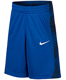 Nike Dri-FIT Avalanche Shorts, Big Boys