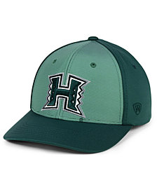 Top of the World Hawaii Warriors Mist Cap