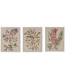 Madison Park Linen Botanicals 3-Pc. Canvas Print Set