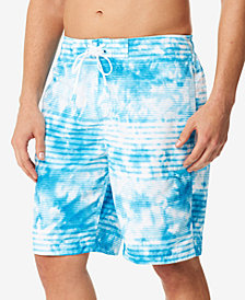 Speedo Misty Blur Stripe E-Board 9'' Swim Trunks