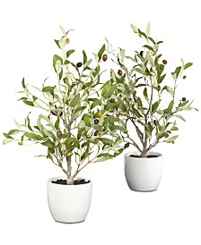 "Nearly Natural 2-Pc. 18"" Olive Tree Set with Vases"