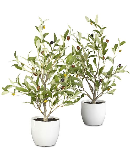"""Nearly Natural 2-Pc. 18"""" Olive Tree Set with Vases"""