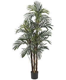 Nearly Natural 5' Robellini Palm Tree