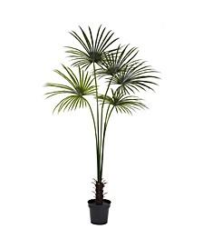 7' Fan Palm UV-Resistant Indoor/Outdoor Tree