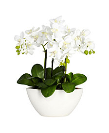 Nearly Natural Phalaenopsis Flower Arrangement