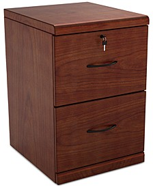 Rytter 2-Drawer Vertical File Cabinet