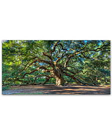 "Pierre Leclerc 'Angel Oak Charleston' 24"" x 47"" Canvas Wall Art"