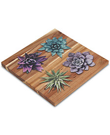 CLOSEOUT! Thirstystone Wood Succulent Trivet
