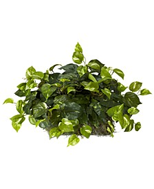 Pothos Artificial Ledge Plant