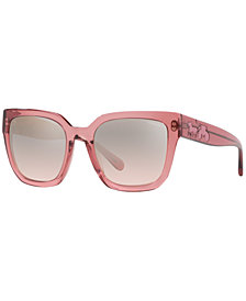 Coach Sunglasses, HC8249 53 L1049