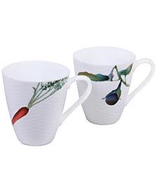 Noritake Kyoka Shunsai 2-Pc. Mug Set