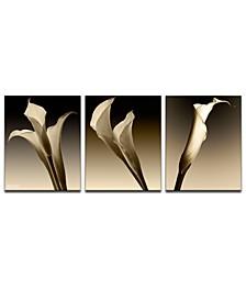 '3 Lillies' Oversized 3-Pc. Canvas Art Print Set